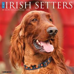 Irish Setters 2021 Wall Calendar