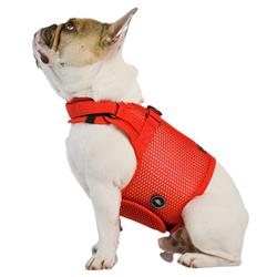 Martingale Dog Harness