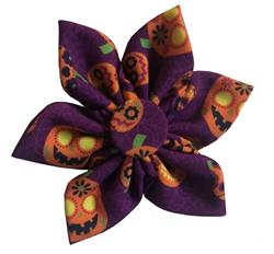 Great Pumpkin Pinwheel by Huxley & Kent