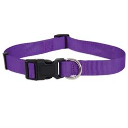Petmate® Adjustable Dog Collar Purple
