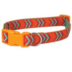 Petmate® Orange Chevron Rubber Adjustable Dog Collar