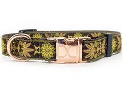 Venice Olive Dog Collar Rose Gold Metal Buckles