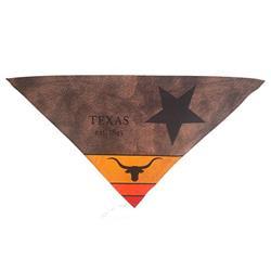 Protective Bandana - Texas