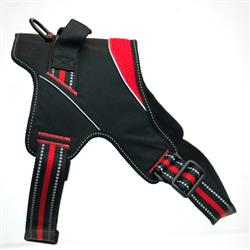 Patented Hart Harness Red
