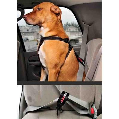 EzyDog Seatbelt Restraint