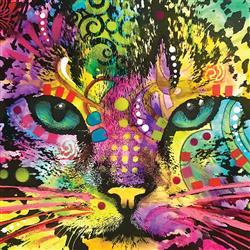 Cat Closeup Puzzle