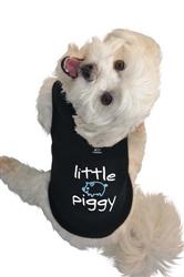 Little Piggy Tank