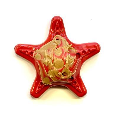 Starfish Ultra Durable Nylon Dog Chew Toy for Aggressive Chewers
