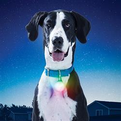 SpotLit XL Rechargeable Collar Light - Disc-O Select by Nite Ize