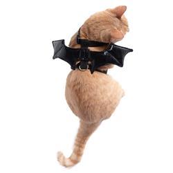 Cat Bat Wing Harness