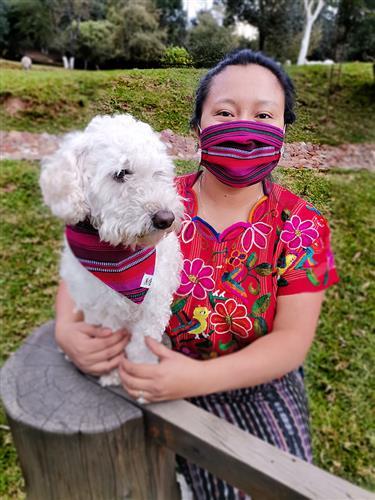 Mariposa Lily Dog Bandana