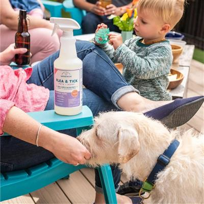Rosemary Flea, Tick & Mosquito Spray for Pets + Home by Wondercide