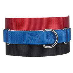 Guardian Gear Nylon Martingale Dog Collar