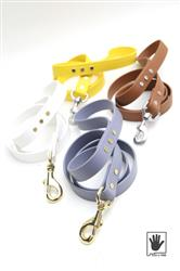High Desert Collection | Waterproof Dog Leash | Biothane