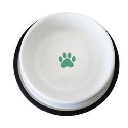 Non Skid White Bowl With Robin Egg Paw Design 16oz