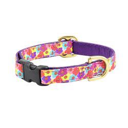 Tiny Blooms 5/8″ Floral Dog Collar
