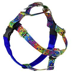Earthstyle ROY G BIV Freedom No-Pull Dog Harness