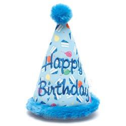 Birthday Boy Hat Toy