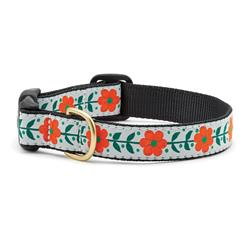Orange You Pretty Dog Collars, Leads, & Harnesses