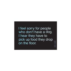 I Feel Sorry... Vinyl Sticker
