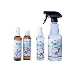 Eucalyptus-Mint Spa and Home Collection - 4 Assorted Bottles