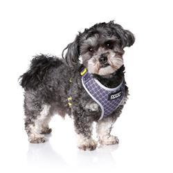 Neoflex Soft Dog Harness -ODIE