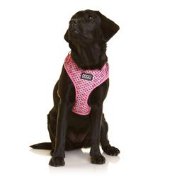 Neoflex Soft Dog Harness -TOTO