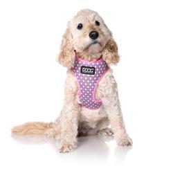 Neoflex Soft Dog Harness -LUNA
