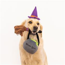 Witch Costume Kit by Zippy Paws