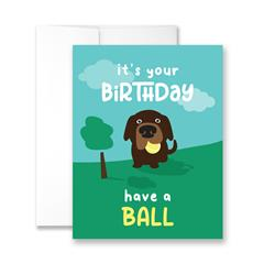 It's Your Birthday Have A Ball - Package of Six Greeting Cards