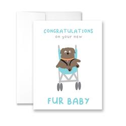Congratulations On Your New Fur Baby - Package of Six Greeting Cards