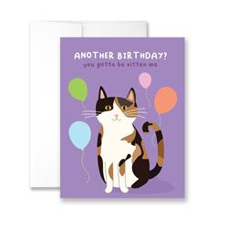 Another Birthday? You Gotta Be Kitten Me - Package of Six Greeting Cards