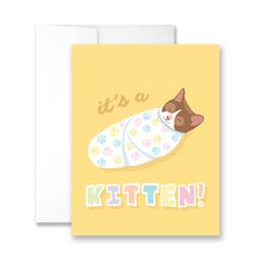 It's A Kitten! - Package of Six Greeting Cards