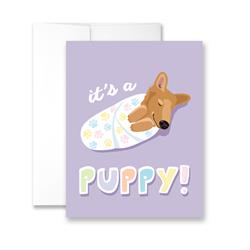 It's A Puppy! - Package of Six Greeting Cards