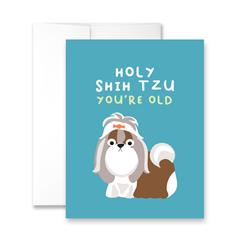 Holy Shih Tzu You're Old - Package of Six Greeting Cards