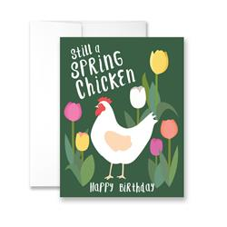 Still A Spring Chicken Happy Birthday - - Package of Six Greeting Cards