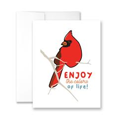 Enjoy The Colors Of Life (Cardinal) - Package of Six Greeting Cards