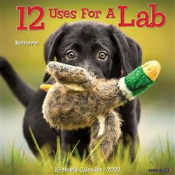 12 Uses for a Lab 2022 Wall Calendar