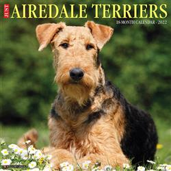 Airedale Terriers 2022 Wall Calendar