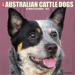 Australian Cattle Dogs 2022 Wall Calendar
