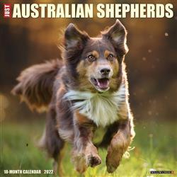 Australian Shepherds 2022 Wall Calendar