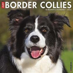 Border Collies 2022 Wall Calendar