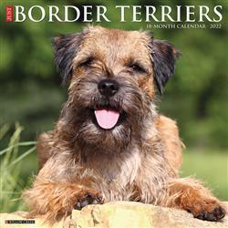 Border Terriers 2022 Wall Calendar
