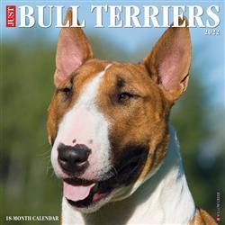 Bull Terriers 2022 Wall Calendar