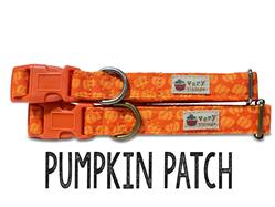 Pumpkin Patch – Organic Cotton Collars & Leashes