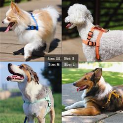 Lof Pet Training Harness with Handle