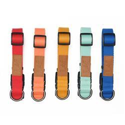 Lof Pet Classic Dog Collar
