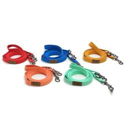 Lof Pet Folding Dog Leash