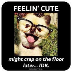 FEELIN CUTE CRAP ON FLOOR - Coaster