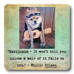 WILLIE DOG - Coaster